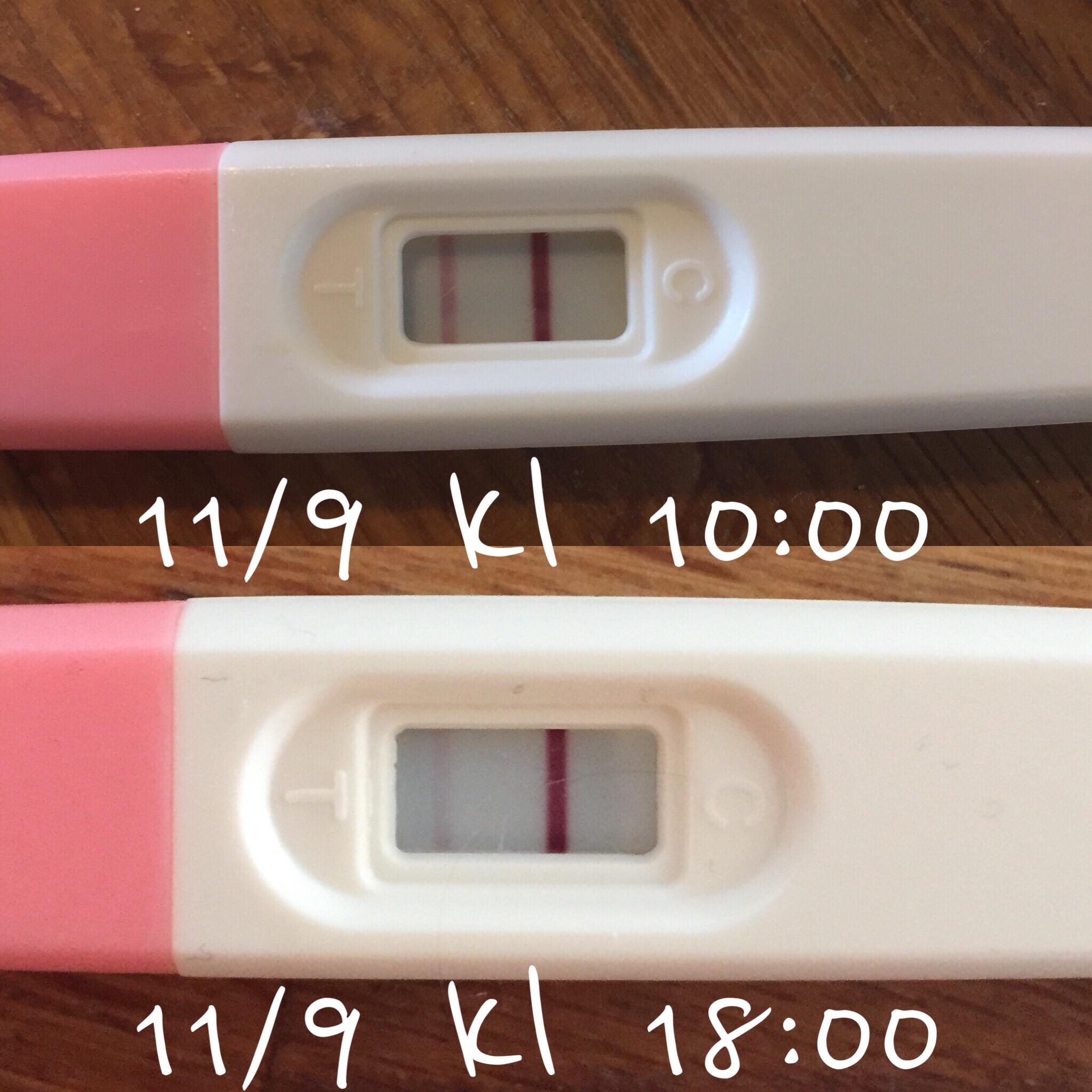 gravid med ägglossningstest