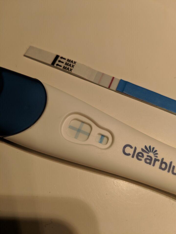 gravid trots blödning vid bim