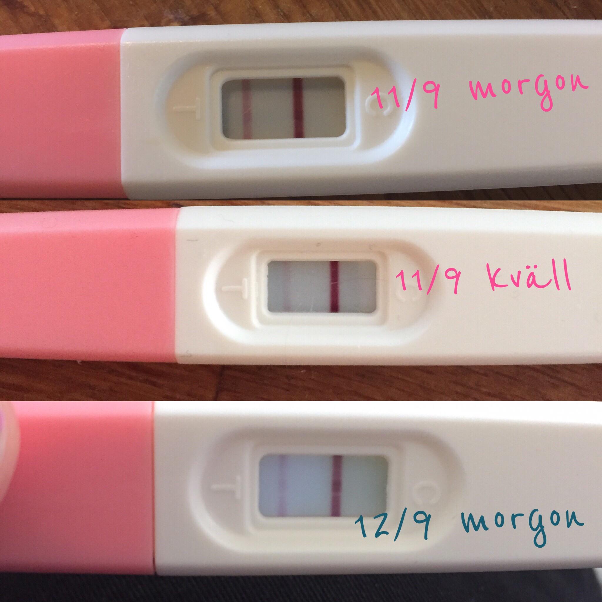 ägglossning flytning gravid