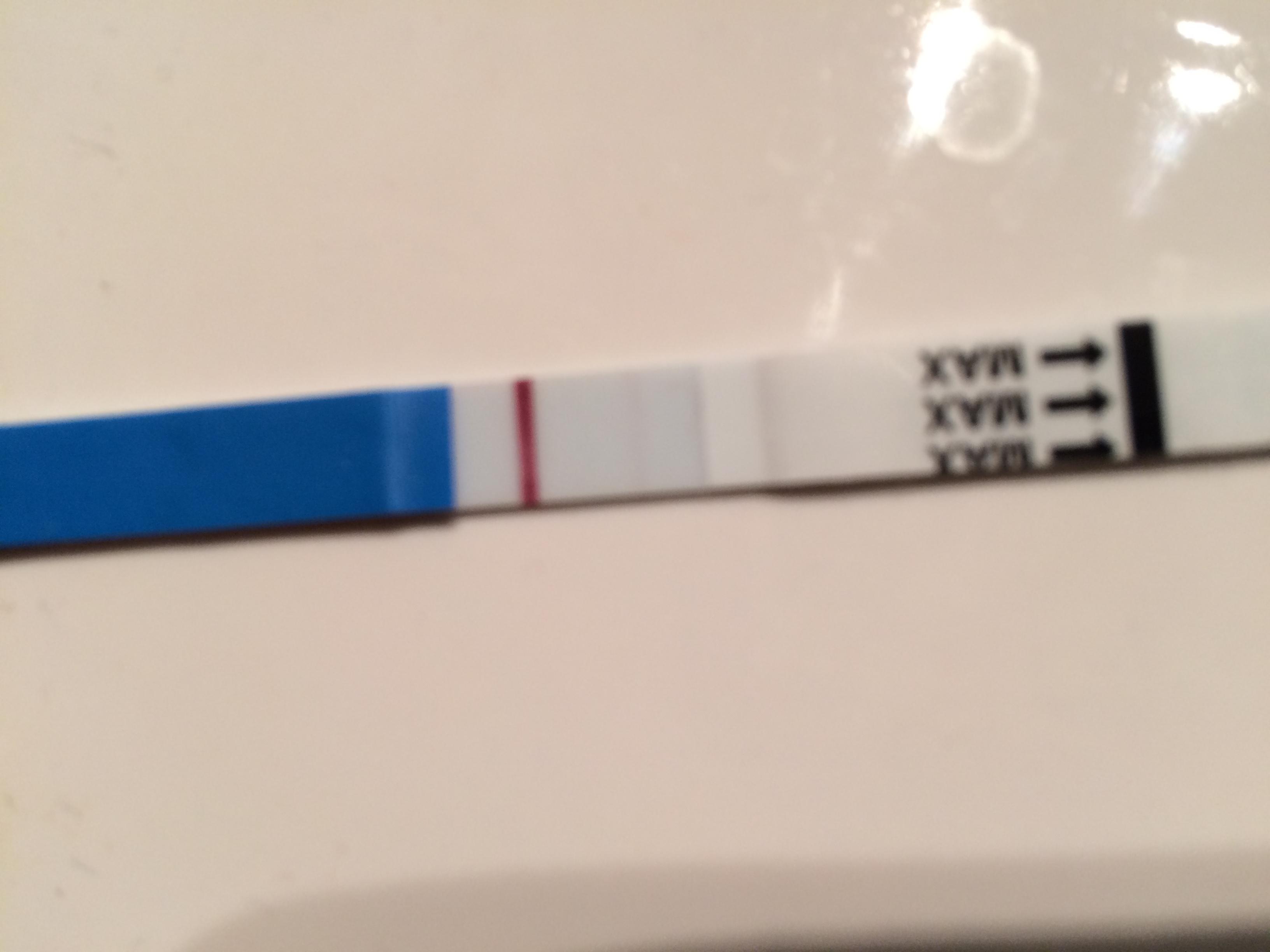 gravid trots negativt test